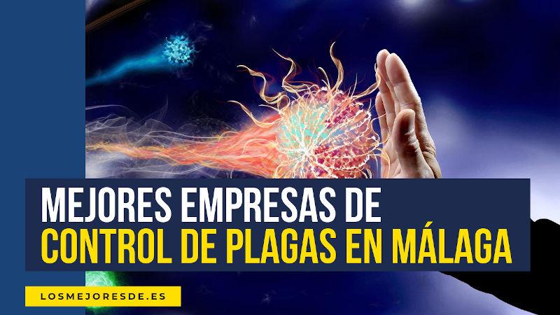 mejores empresas de control de plagas en Málaga